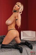 Sexy Venera DDFbusty.com